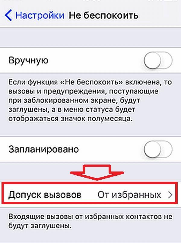 Допуск вызовов для iPhone